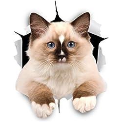 Winston & Bear Autocollants Chat Muraux 3D - Paquet de 2 - Autocollants Décoratifs Drole - Stickers Ragdoll Marron Chat Pour Mur - Frigo - Toilette - Salle - Voiture - Réfrigérateur