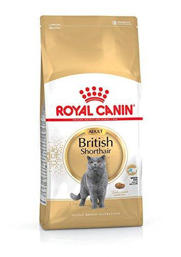 Royal Canin British Shorthair Adult Katze 400g