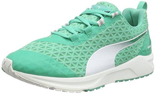 Puma Ignite XT Filtered WNS, Chaussures de Fitness Femme