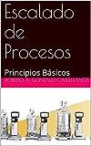 Escalado de Procesos: Principios Básicos (Spanish Edition)