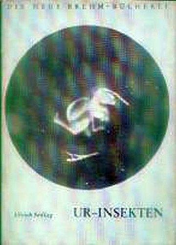Ur-Insekten