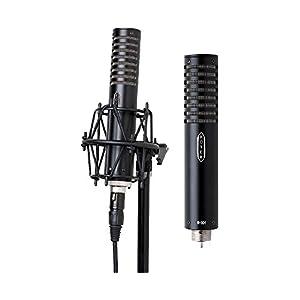 Micro-Nastro ROYER LABS R-101-MP coppia