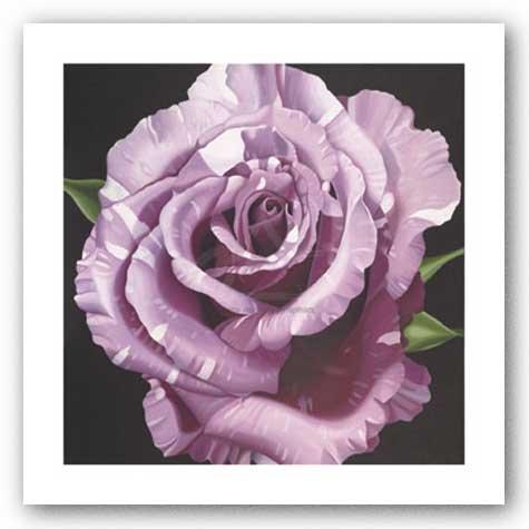 rose-von-elizabeth-hellman-kunstdruck