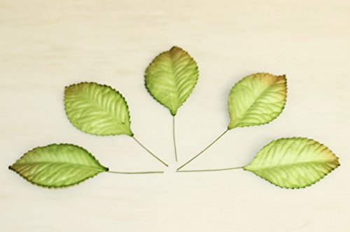 100 gr?ne Mulberry Paper Rose Blatt Laub Hochzeit b 3,5 cm.