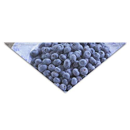 Gxdchfj Blueberries 宠物狗小猫头巾三角形头巾配件 (Kundenspezifischer Kostüm Outfit)