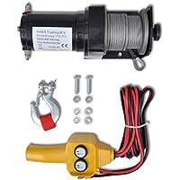 Festnight Cabrestant Eléctrico Control Remoto de Cable con Mando a Distancia de Alambre 120 Amp.