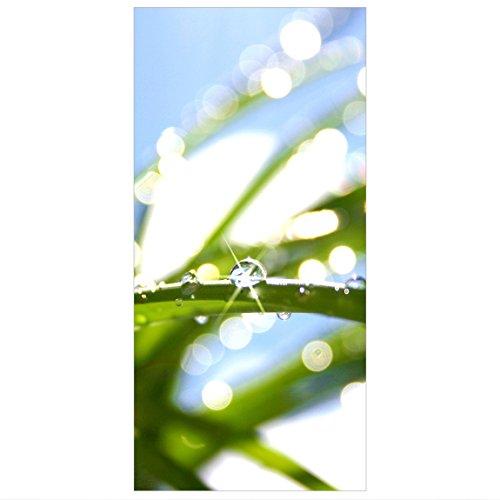 Flächenvorhang Set Kiss of Sun Gras Wassertropfen Licht Sonne Morgen 250x120cm | Schiebegardine...