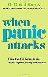 When Panic Attacks: A new drug-free therapy to beat chronic shyness, anxiety and phobias by Dr David Burns (2010-03-04)