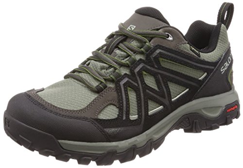Evasion 2 GTX, Zapatillas de Senderismo para Hombre, Gris (Castor Gray/Black/Chive 000), 44 2/3 EU Salomon