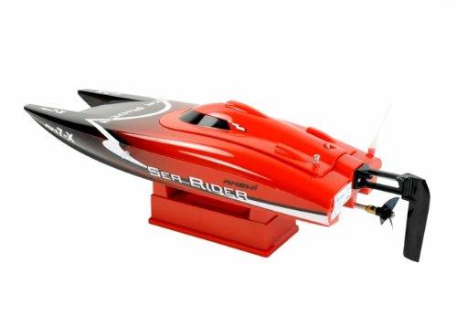 Amewi 26024 - Catamaran Sea Rider RTR, 2.4 GHz, 42 cm