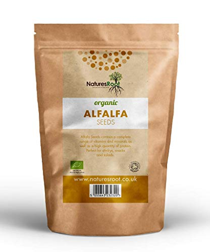 Natures Root BIO Alfalfa Samen 500g - Luzerne Keimsaat Superfood | Microgreen | Sprossen | Nicht GVO -