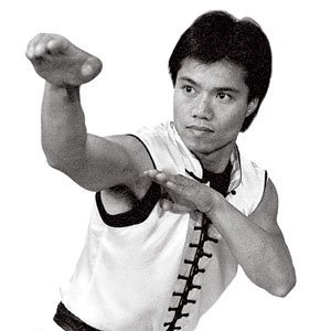 century-master-tat-mau-wongs-choy-lay-fut-kung-fu-dvd-series-titles