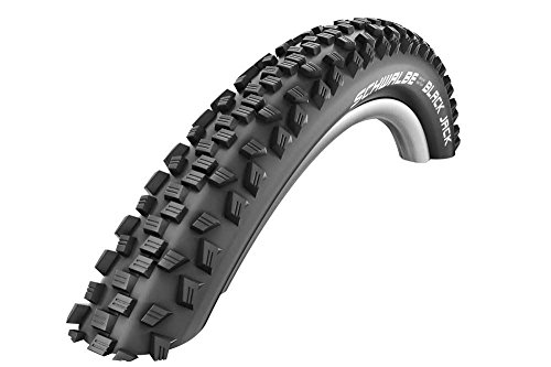 SCHWALBE Black Jack Active 20