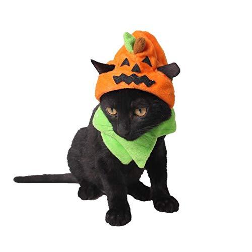 CJN Halloween PET Liefert Trick Oder Behandeln Kürbis-Hut, Katze Welpen Hat Kleinen Haustier Schmuck