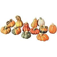 Frank Flechtwaren Decorative Terracotta pumpkins, set of 12