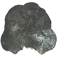 Pyrit Sonne 1 Unikat Sie Hat ca. 171 g. Seine ca. B 10.5.H 9.0.T 0.8 cm. preisvergleich bei billige-tabletten.eu