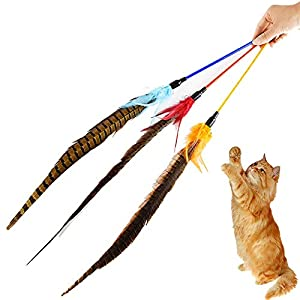 FELICIGG Multi-Plumes Teaser Et Exerciseur pour Chat Et Chaton - Baguette Chat Cat Interactive