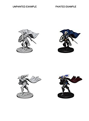 Pathfinder Roleplaying Game Unpainted Miniatures: Elf Female Paladin