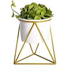Geometrische Eisen Rack Halter Metall Ständer Gold Mit Weißem Keramik  Übertopf Innen Desktop Garten Topf Für