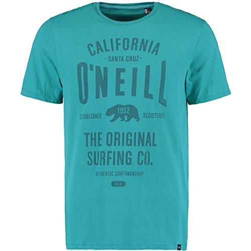 O'Neill Herren Muir T-Shirts green/blue slate