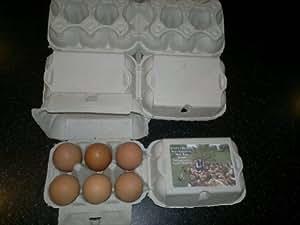 New fibre Flat Top Egg Boxes 100 Half Dozen suits all egg sizes