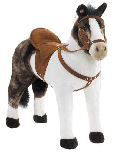reitpferd-pferd-rassepferd-pinto-mit-sound