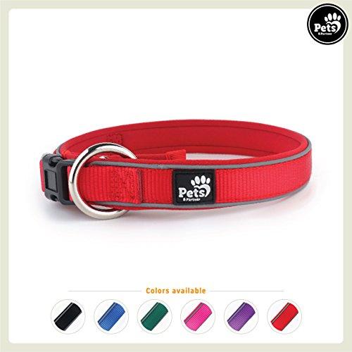 Pets&Partner® Hundehalsband aus Neopren, reflektierendes Halsband in verschiedenen Farben für große und kleine Hunde, S, Rot