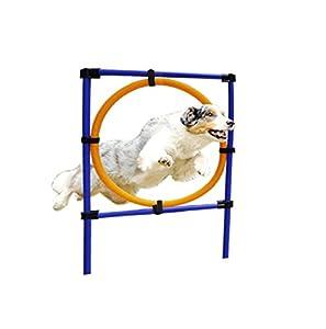 CERBERUS animal domestique Chien extérieur formation équipements de sport Jump Bague Speed Agility d'entraînement amovible
