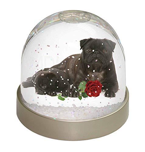 Advanta schwarzer Mops Hunde mit Rot Rose Foto Snow Globe Schneekugel Strumpffüller Geschenk, mehrfarbig, 9,2x 9,2x 8cm - Mops-fotos