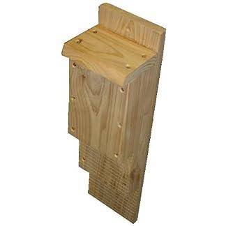 BAT BOX – BAT HOUSE – BAT NESTER -DOUBLE CHAMBER – CEDAR – PREMIUM QUALITY 41wp6IApkbL