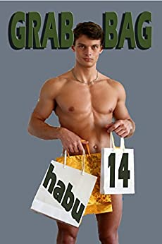 Grab Bag 14: A Gay Erotica Anthology (Grab Bag Gay Erotica Anthologies) by [habu]