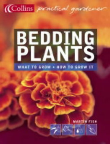 Bedding Plants (Collins Practical Gardener) by Martin Fish (5-Apr-2004) Paperback