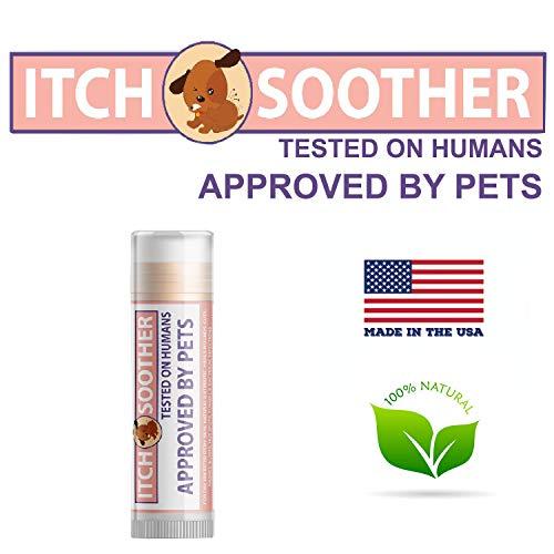 Pawtitas Bálsamo para la picazón de su Mascota tamaño de Viaje bálsamo cicatrizante Protege e hidrata la Piel de su Perro Antibiótico Natural de 0,15 OZ 4,5 ML