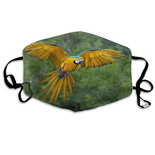 Xdevrbk Unisex Blue Gold Parrot Training Mask/Wind Mask (Gear Head Parrot)