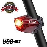 Fahrrad Rücklicht, StVZO Zugelassen LED USB Wiederaufladbare Fahrradbeleuchtung Wasserdichte Fahrradlicht für Rennrad