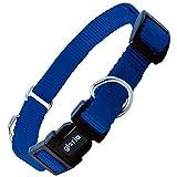 Gloria Nylon Doppel-Ring Hundehalsband (3.8 x 55-80cm) (Blau)