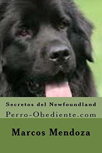 Secretos del Newfoundland: Perro-Obediente.com