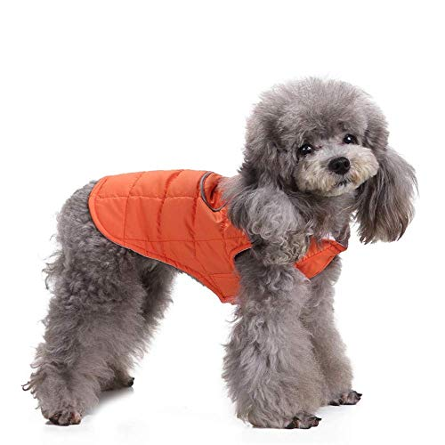 Dog Clothes Winter Cotton Coat Pet Clothes with Zipper Jacket for Small Medium Puppy Warm Clothes (Color : ORANGE, Size : XL)