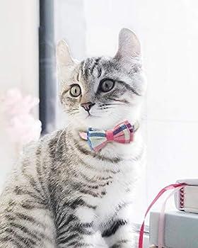 Joytale Collier de Chat Réglable avec Clochette et Cravate, Mignon Colliers de Sécurité pour Chaton Fille et Garçon,2Pack