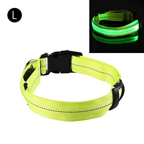 Ksruee Collar para Mascotas Luz Led Noche Anti-Perdida USB Tipo de Gota de Agua Controlador Suministros para Mascotas Collar Reflector Collares Luminosos