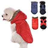 BLURY Cappottino Cane Felpa con Cappuccio per Cani Vestiti Imbottito Inverno per Cani Cuccioli Costume Abbigliamento con Chiusura in Velcro per Pet Cani Taglia Piccola e Media S in Rosso