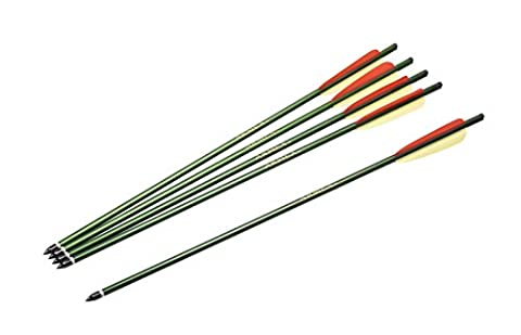 Armex U.K. Sportbogen Aluminiumpfeile 50 cm 5 Stück, 2.2273 (Hunter Bow)