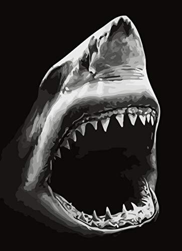 CoorArt Malen nach Zahlen Erwachsene Kinder, DIY Ölgemälde, Großer weißer Hai - 40x50cm