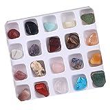Bangle009 - Set di 20 Decorazioni minerali Ore Fossil in Pietra Naturale lucidata, Idea Regalo, One Color, Taglia Unica