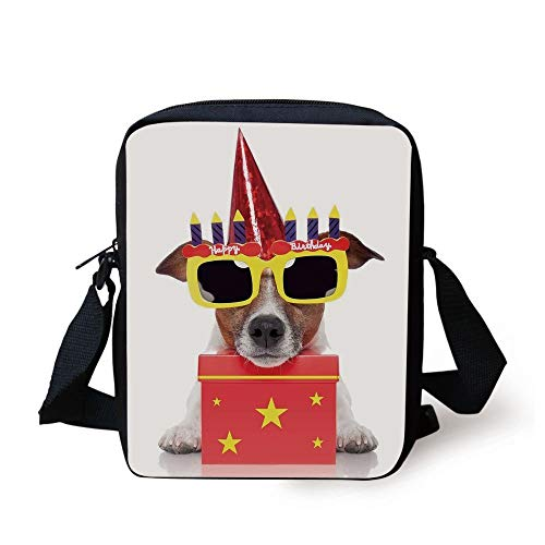 Birthday Decorations for Kids,Party Dog with Sunglasses and Cone Hat Boxes Stars Image,Red and Yellow Print Kids Crossbody Messenger Bag Purse