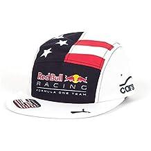 bb7698ebeac4e Gorra Plana Red Bull Racing Oficial 2017 Ricciardo  GP EE.UU