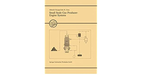 Small Scale Gas Producer-Engine Systems