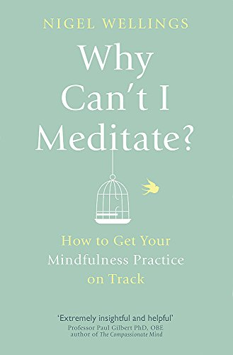 Why Can't I Meditate?: how to get your mindfulness practice on track PDF Books