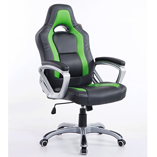 Cherry Tree Furniture Brand New Designed Racing Sport Swivel Office Chair Computer Desk Chair (Black & Green)