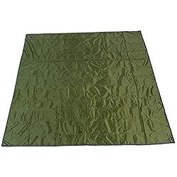 Rayami Lona Impermeable Verde 215 X 215 Cm Multifuncional Barrera De Humedad Con Bolsa De Transporte